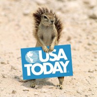 0911usatodaysquirrel