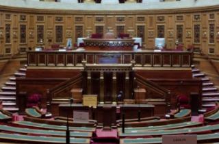 PicMonkey Collage - French Senate