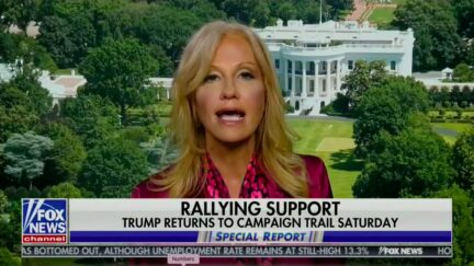 Kellyanne Conway Dismisses Fox News Poll Showing Trump Losing by 12 Points to Biden