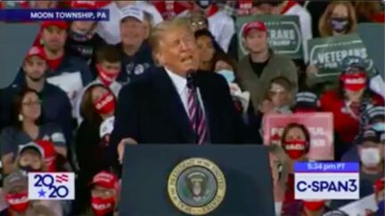 Reporters Call Out Trump for Reveling in MSNBC Reporter Being Hit by Tear Gas Shell
