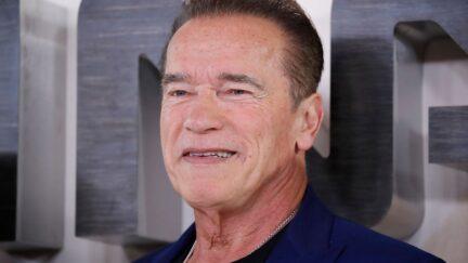 Arnold Schwarzenegger Gavin Newsom