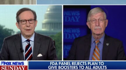 Chris Wallace Debates NIH's Francis Collins on Boosters