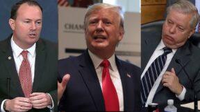 Mike Lee, Trump, Lindsey Graham