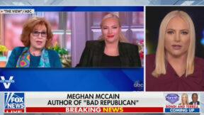 Meghan McCain Rips The View on Fox News